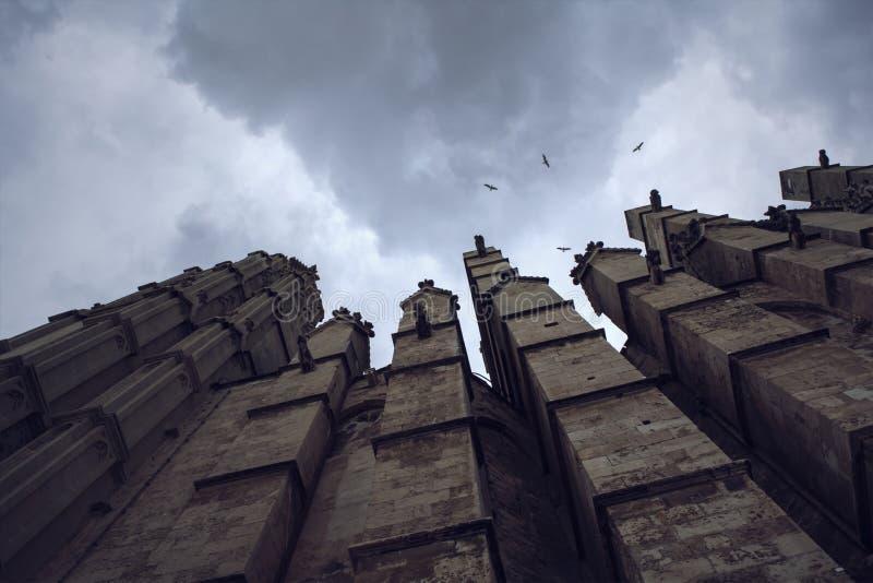 Prospettiva sinistra e scura della cattedrale di Palma de Mallorca fotografia stock libera da diritti