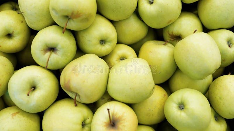 Prospettiva sopraelevata cruda degli ambiti di provenienza della frutta e della verdura della mela verde, parte di una collezione fotografie stock libere da diritti