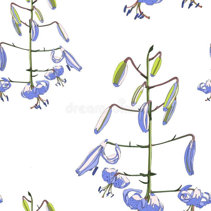 Prosta fiołkowa leluja kwitnie bezszwowego wzór Jaskrawi kolory royalty ilustracja