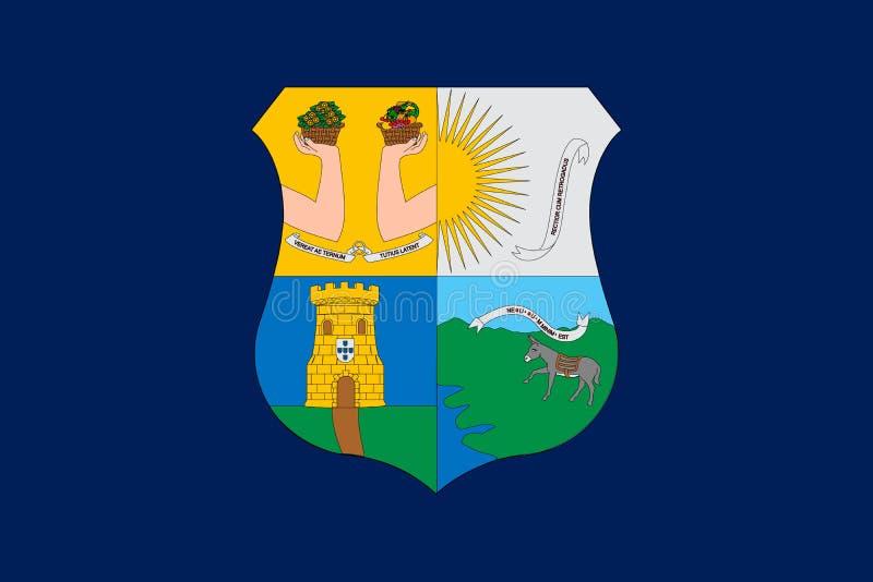Prosta flaga Poprawny rozmiar, proporcja, barwi ilustracja wektor