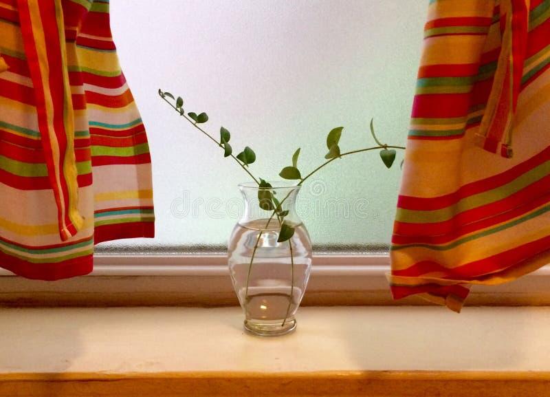 Prosta waza w okno z Pomarańczowymi i Żółtymi zasłonami fotografia royalty free