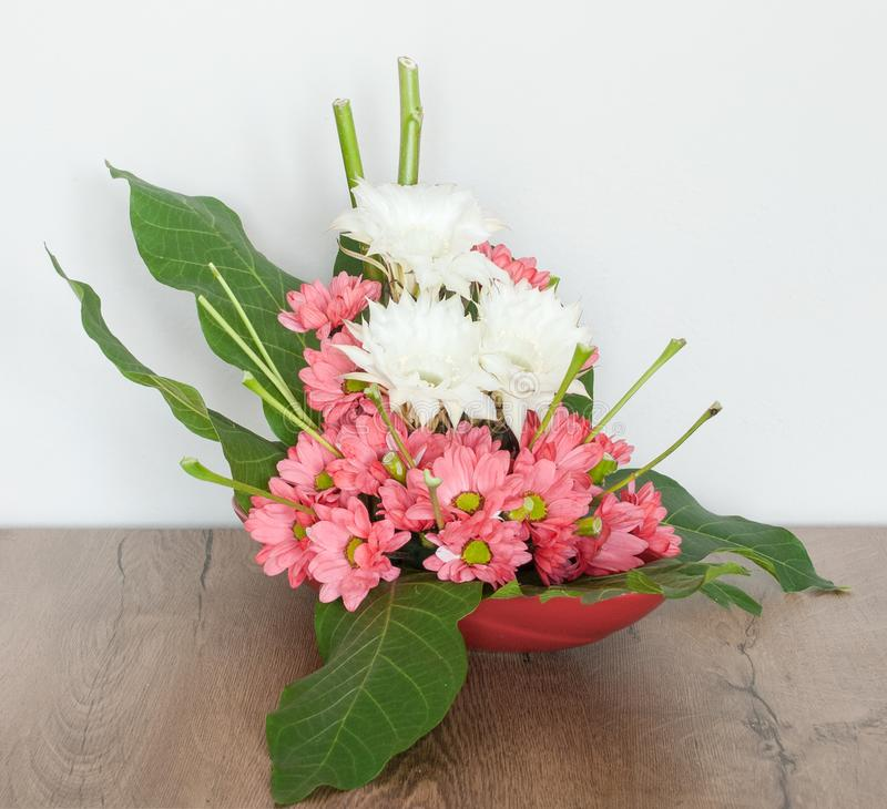 Proste stokrotki z Tropikalnymi kwiatami zdjęcia royalty free