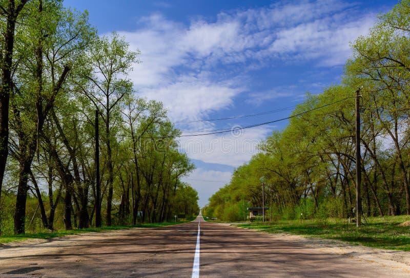 Prosto tęsk asfaltowa droga w lasowej Chernobyl niedopuszczenia strefie Wej?cie w miasto fotografia royalty free