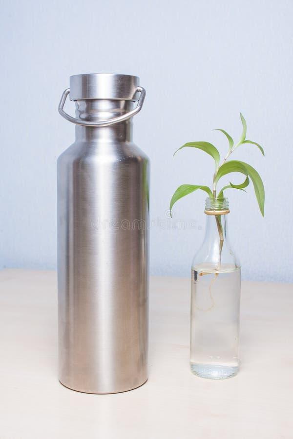 Prostota: miniaturowa stara trunek butelka repurposed jako waza dla tradeskanci rośliny trzykrotki i stali nierdzewnej reusabl zdjęcia royalty free