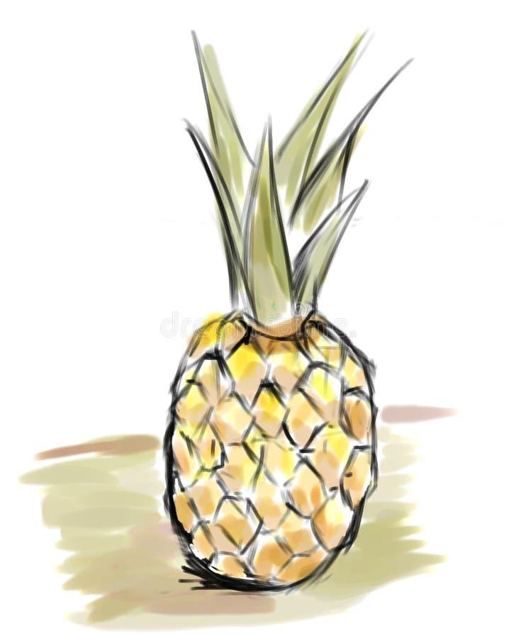 prosty ananasy ilustracja wektor