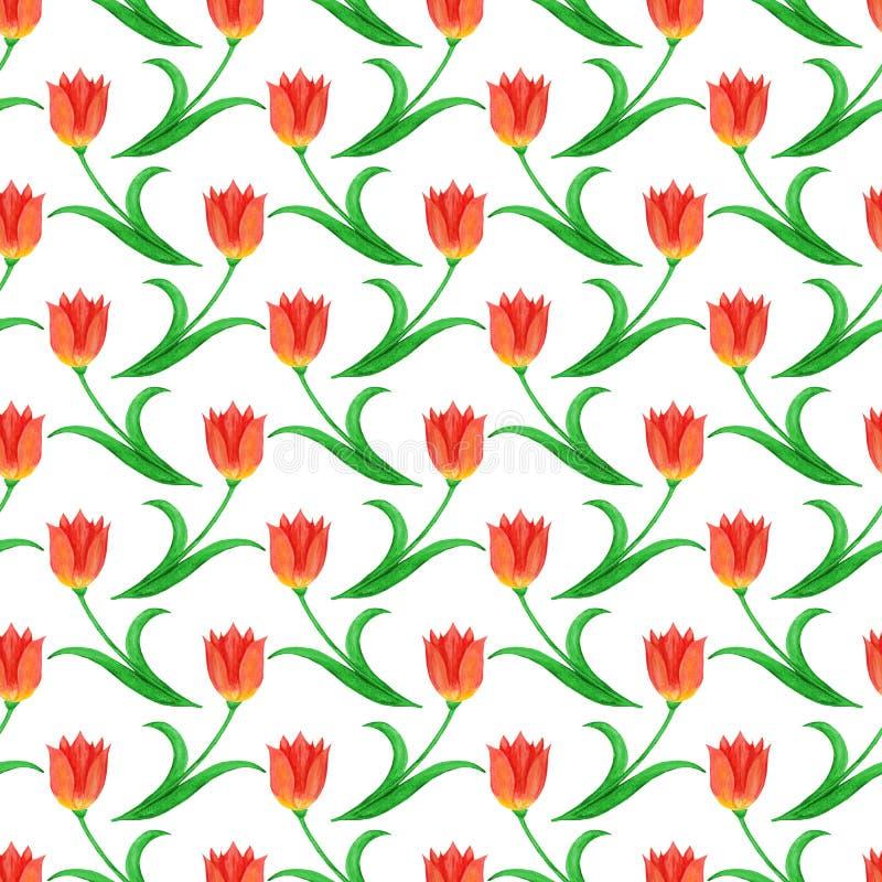 Prosty bezszwowy wzór tulipany odizolowywający na białym tle royalty ilustracja