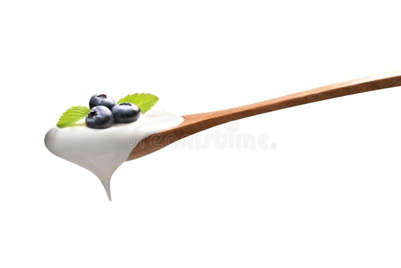 Prosty jogurt na łyżce z świeżymi czarnymi jagodami na odgórny odosobnionym na białym tle zdjęcie royalty free
