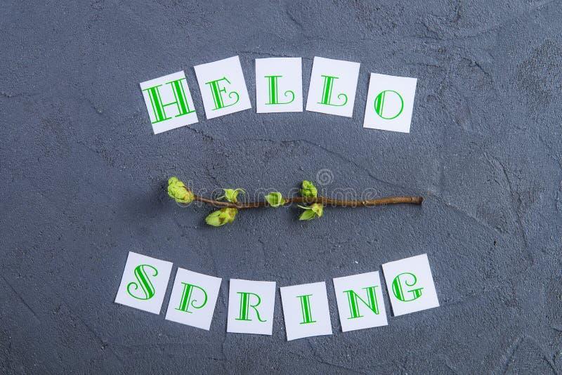 Prosty skład wiosny kaligrafii branche z młodymi krótkopędami greenery na zmroku popielatym kamiennym tle i literowanie Cześć obrazy royalty free
