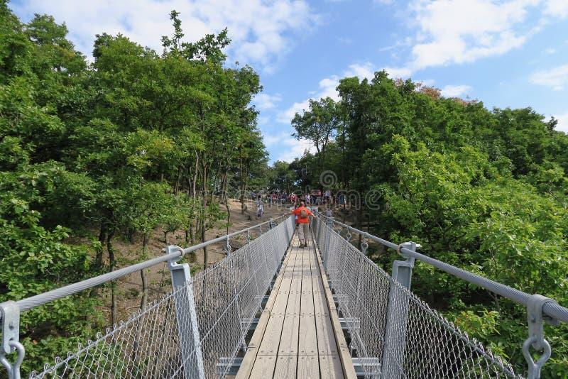 Prosty zawieszenie most Geierlay zdjęcia stock