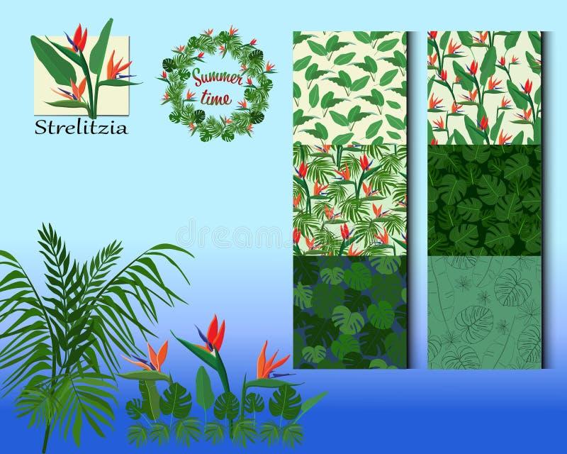 Prostych tropikalnych kwiat?w bezszwowy wz?r ilustracja wektor