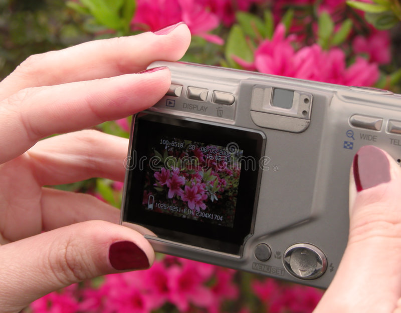 Prosumer digital camera stock images