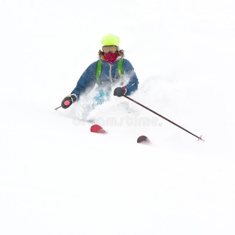 proszka śnieg obraz royalty free