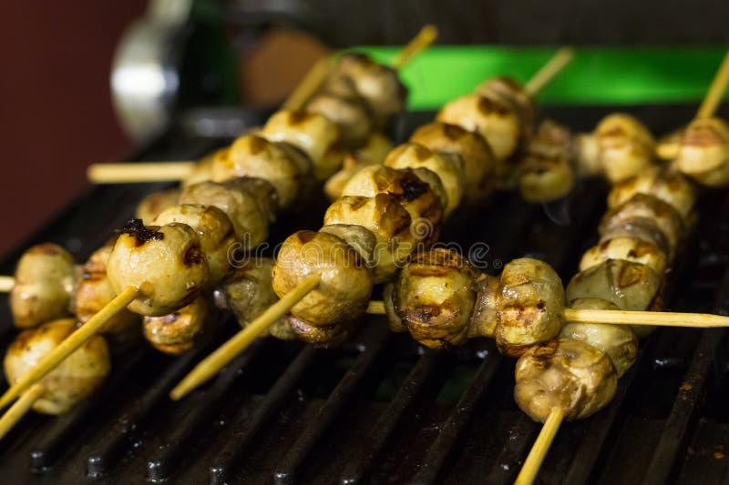 Protéines diététiques frites de plat de chiches-kebabs végétaux appétissants le déjeuner de lumière en gros plan grillé de casse- photos libres de droits