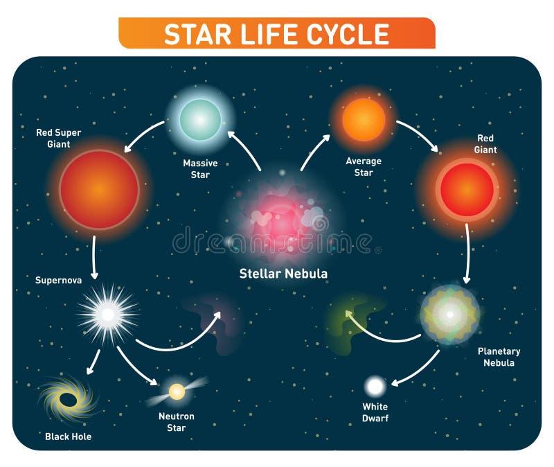 Protagonice los pasos del ciclo de vida de la nebulosa estelar al gigante rojo al calabozo Diagrama del ejemplo del vector ilustración del vector