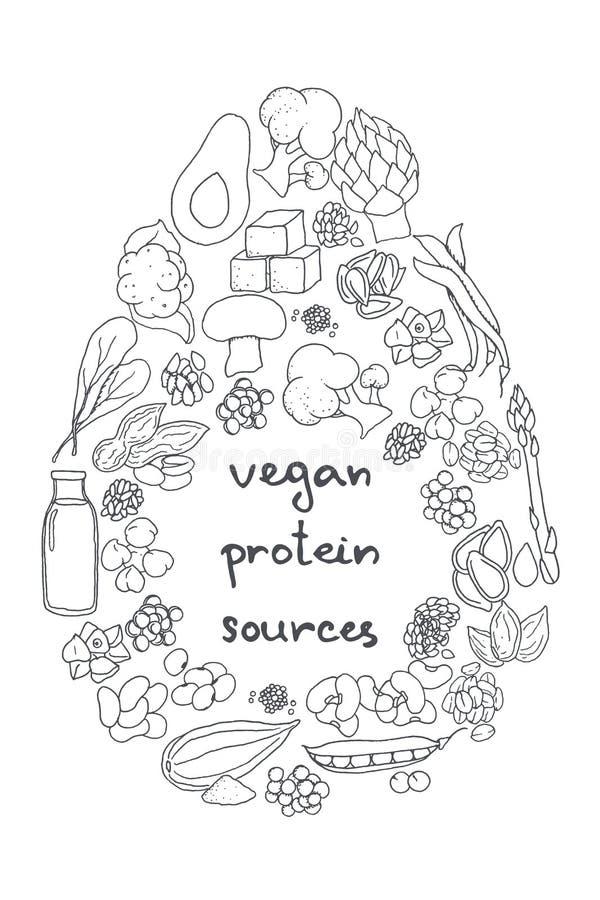 Proteína do vegetariano ilustração royalty free