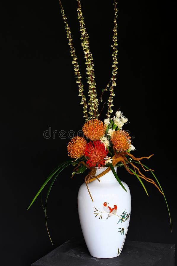 Protea and carnation flowers in white vase royalty free stock images