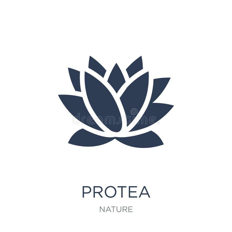 Protea icon. Trendy flat vector Protea icon on white background vector illustration