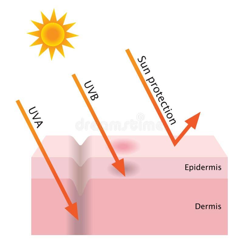 Protección ULTRAVIOLETA de la penetración y del sol ilustración del vector