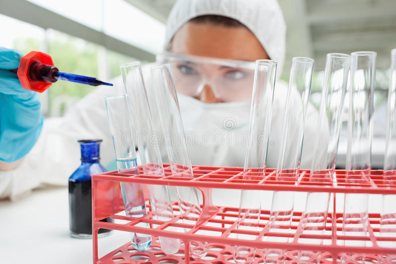 Protected scientist dropping liquid in a test tube. Protected female scientist dropping blue liquid in a test tube in a laboratory royalty free stock images