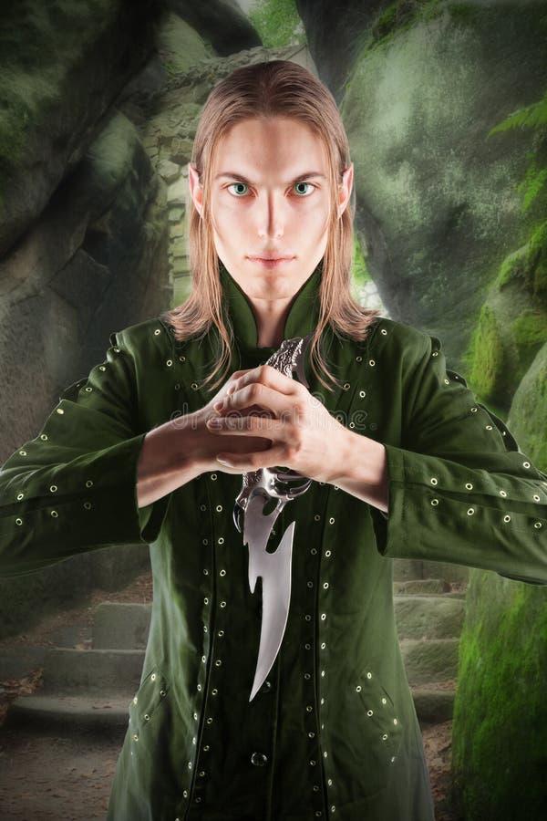 Protecteur d'Elf image libre de droits