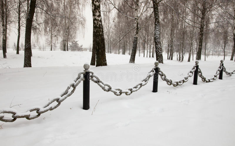 Download Protection stock image. Image of forest, frozen, cold - 23350683