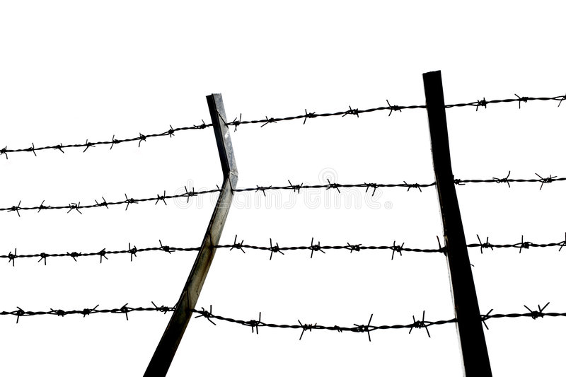 Protection. Detail shot from a barbed wire fance on white royalty free stock photo