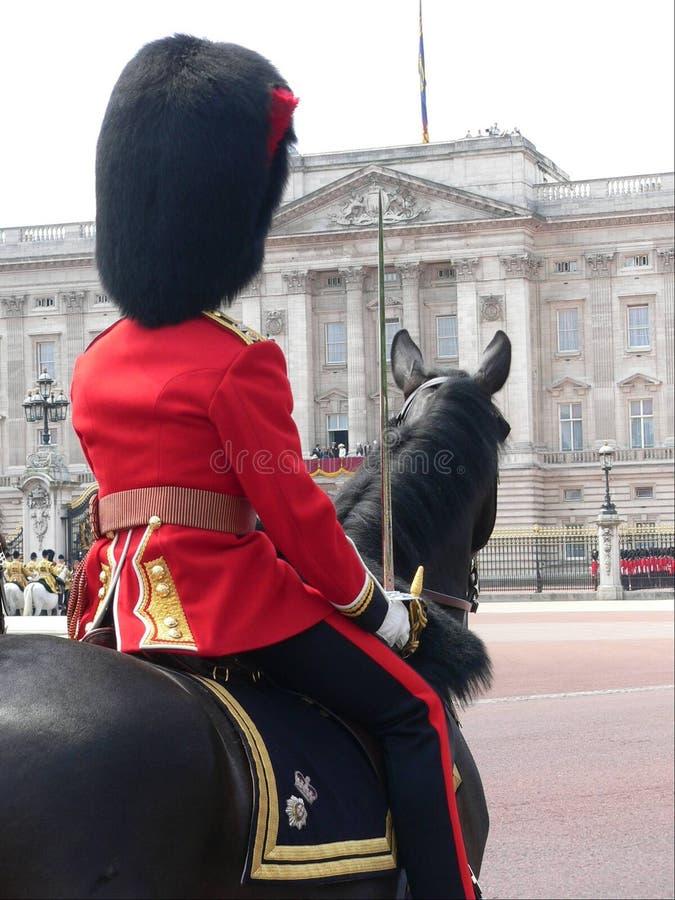 Protector de caballo foto de archivo libre de regalías