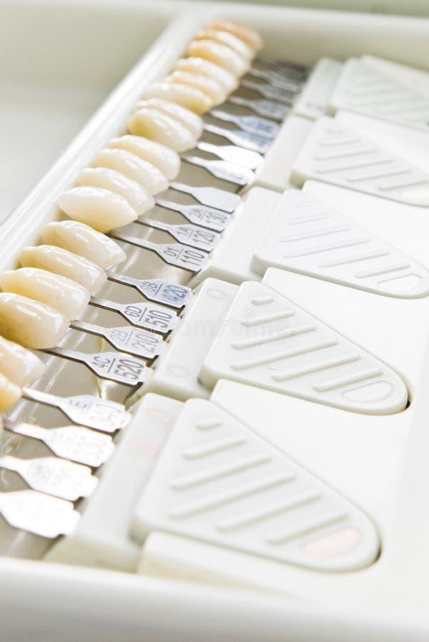 protegge i denti immagini stock libere da diritti