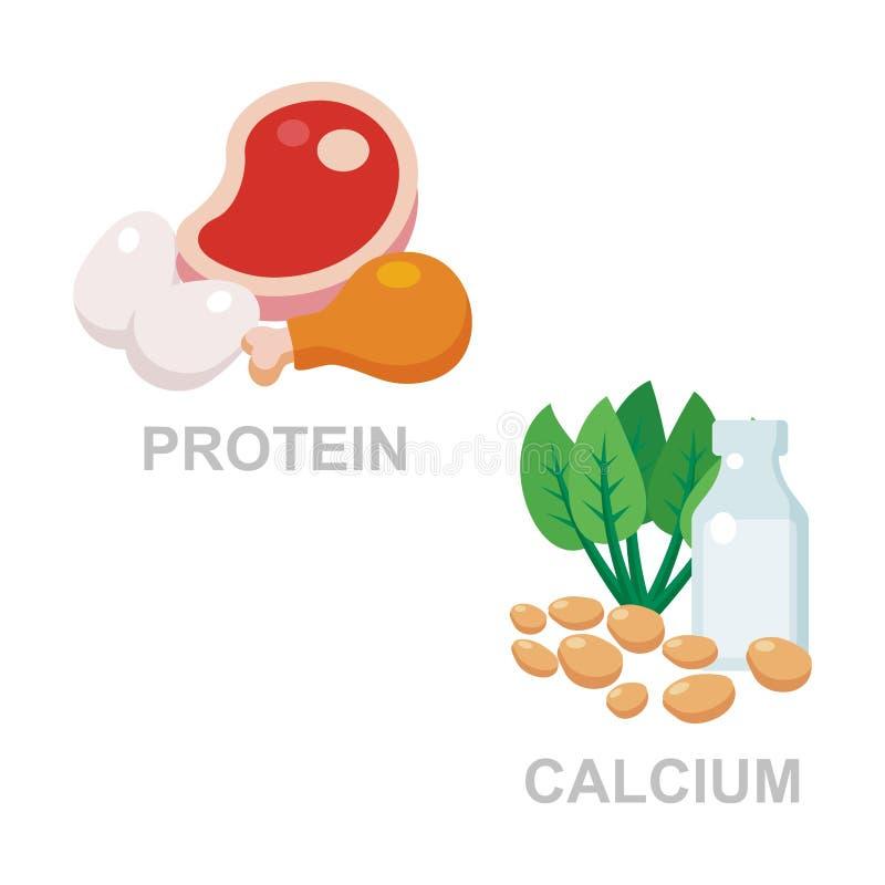 Protein och kalcier vektor illustrationer