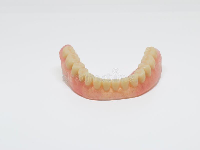 Protesi dentaria più bassa acrilica fotografia stock