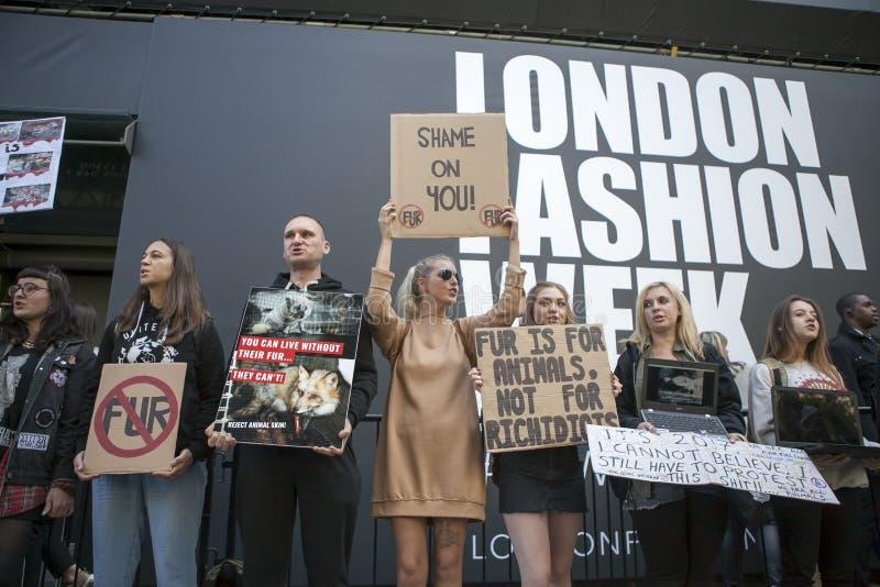 Download Protesta Anti De La Piel Durante La Semana De La Moda De Londres Eudon Choi Exterior Imagen editorial - Imagen de animal, durante: 100531030