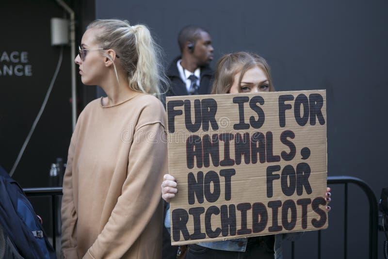 Download Protesta Anti De La Piel Durante La Semana De La Moda De Londres Eudon Choi Exterior Imagen editorial - Imagen de muestra, semana: 100531080