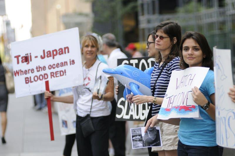 Protesta de la caza del delfín. imagen de archivo