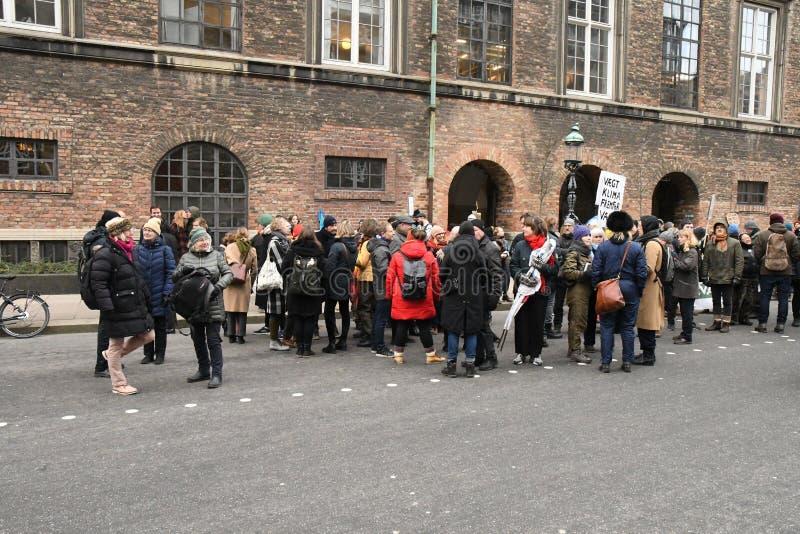 PROTESTA DEL CAMBIO DE CLIMA EN EL PARLAMENTO EN COPENHAGUE foto de archivo libre de regalías
