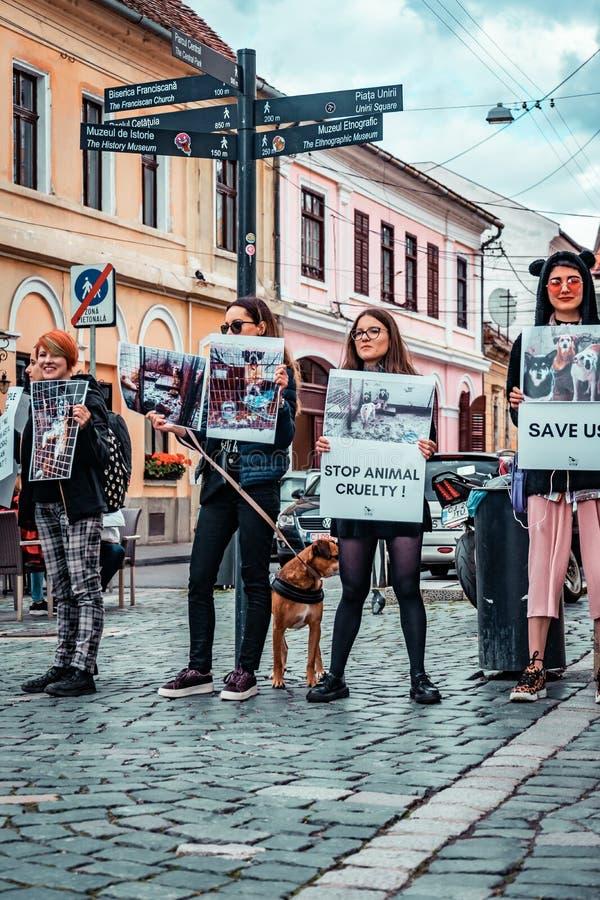 Protestation animale de cruauté d'arrêt image stock