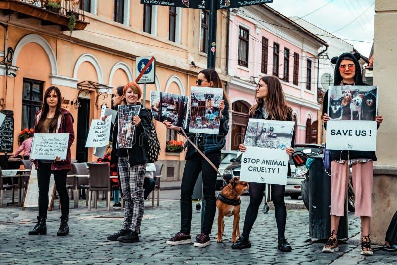 Protestation animale de cruauté d'arrêt photographie stock