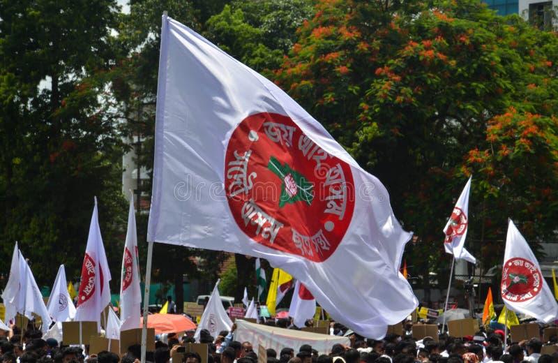 Protestation de masse de Satyagraha image libre de droits