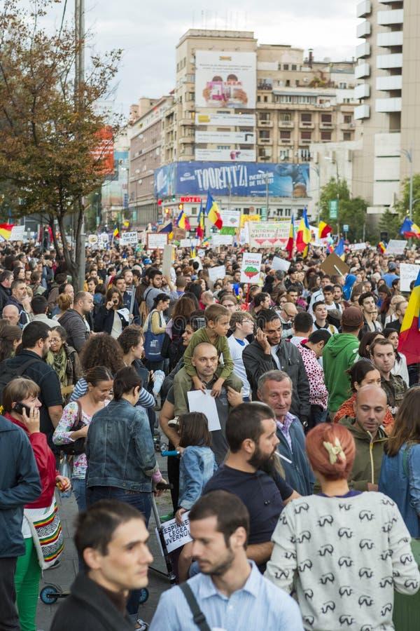 Protesten tegen cyanide gouden extractie in Rosia Montana royalty-vrije stock afbeelding