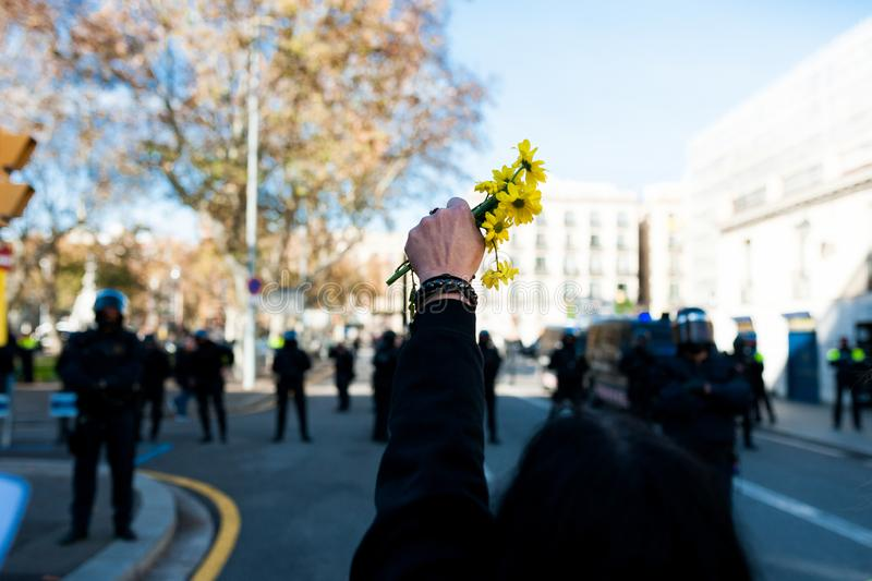 Barcelona, Spain - 21 decemer 2018: young catalan independist, called Cdr, hold yellow flowers in sign of peace during clashes. Protesters march in barcelona stock image