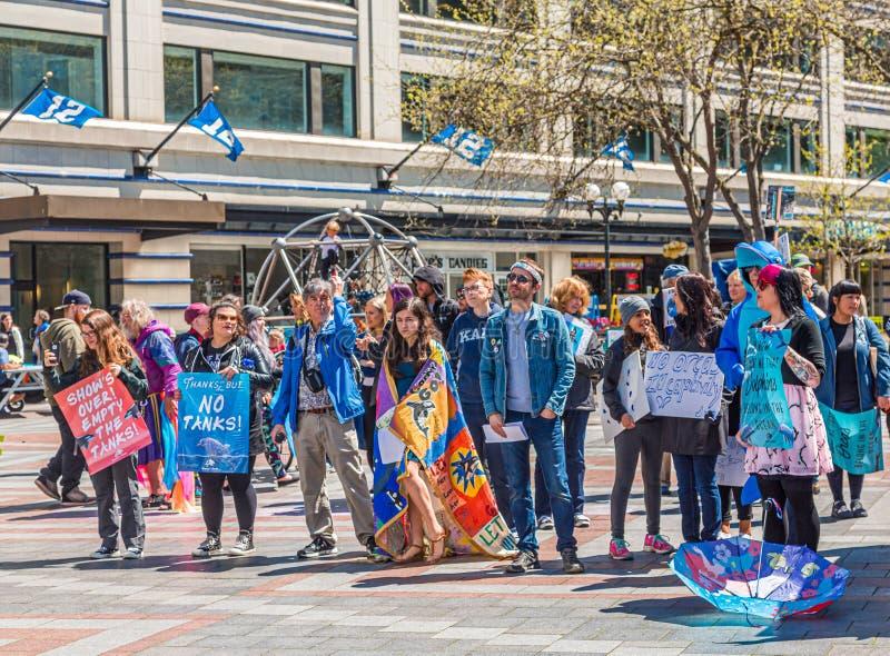 Protestors in Seattle royalty-vrije stock foto