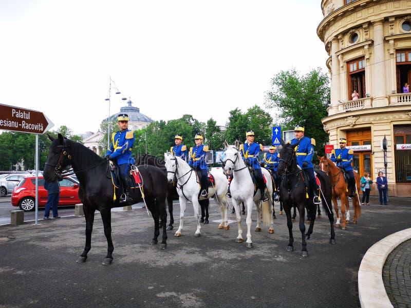 Protetor militar Regiment Mihai Viteazul do protetor a cavalo - 30o foto de stock royalty free