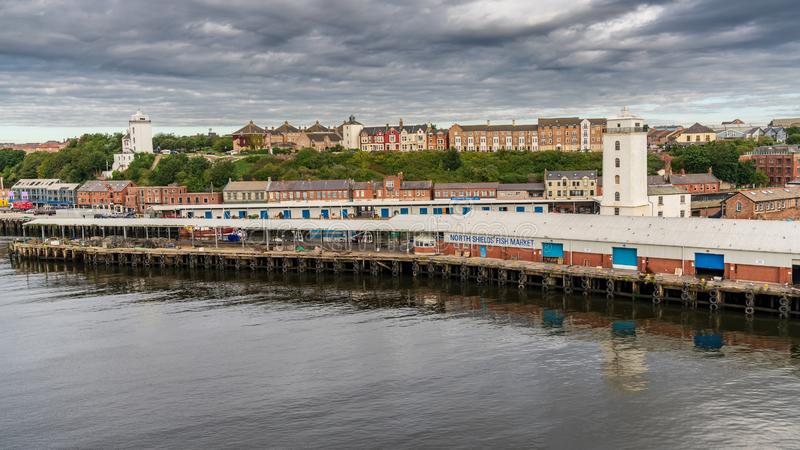 Protetores, Tyne e desgaste nortes, Inglaterra, Reino Unido imagens de stock