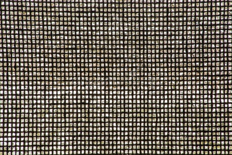 Protezione netta interna di plastica dello schermo di cavo della zanzara della finestra della manopola per l'insetto dell'insetto fotografia stock