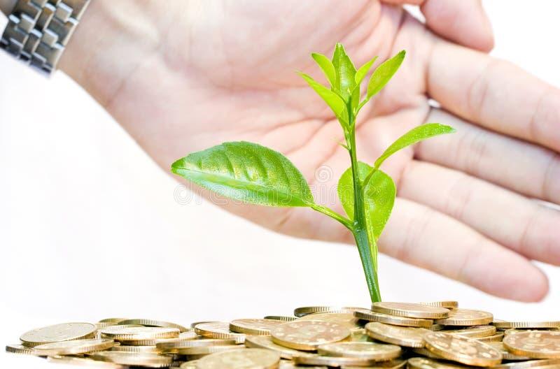 Protezione un investimento e del concetto dei soldi fotografie stock