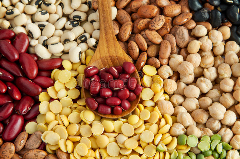 Protien food various legumes. Protien food with various legumes stock photography