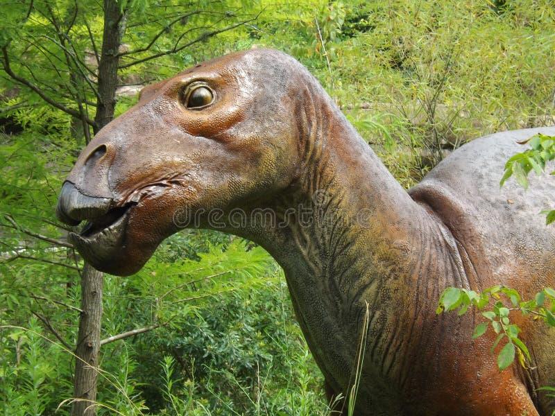 Protoadros Dinosaur. Dino taken at display in Birmingham Zoo royalty free stock image