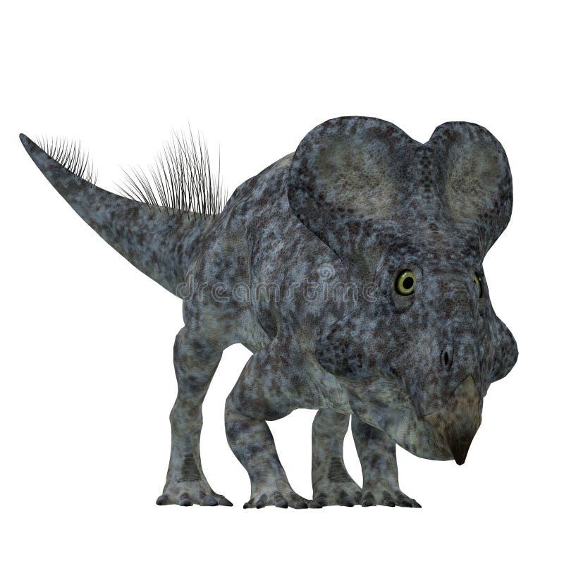 Protoceratops dinosaurie på vit stock illustrationer