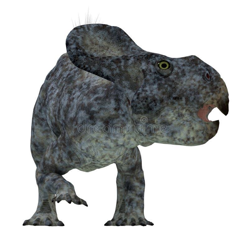 Protoceratops dinosauriehuvud stock illustrationer
