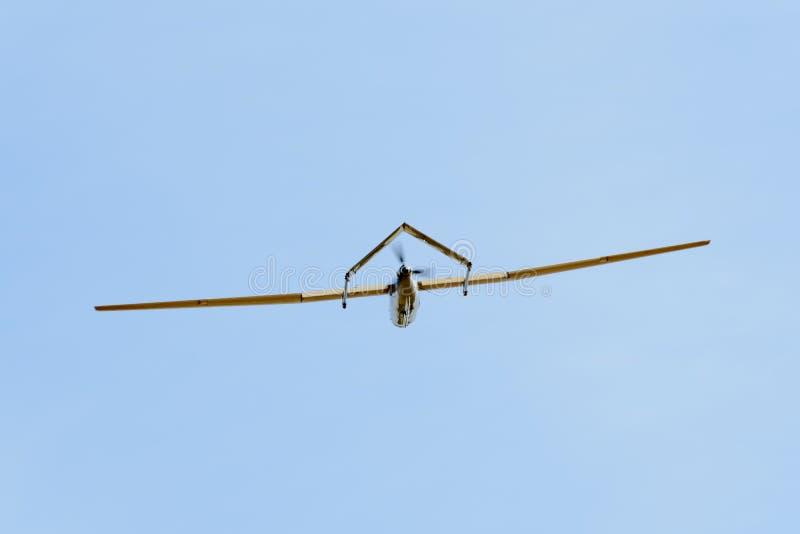 Prototipo del abejón de vigilancia imagenes de archivo
