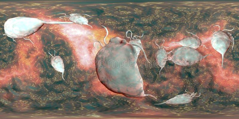 Protozoário dos vaginalis de Trichomonas, opinião de um panorama de 360 graus ilustração stock